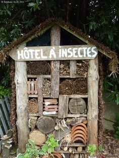 Easy and effective way to control Vegetable Garden Pests. Garden Bugs, Garden Insects, Garden Deco, Garden Pests, Garden Art, Garden Design, Bug Hotel, Garden Planning, Garden Projects