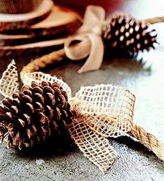 Brush pinecones with gold paint  and glitter; let dry. Attach pinecones to hemp rope using heavy-gauge gold-tone wire. Tie bows of neutral ribbon over the wires.