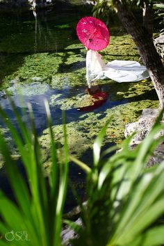 Cenote trash the dress session...before getting wet! Pretty pink parasol really pops in the jungle setting of green!  Wedding photographers Mexico Del Sol Photography