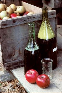 We are starting to make our own hard apple cider now using these directions. This is going to be perfect for thanksgiving and Christmas! www.orchardgreenfarms.com