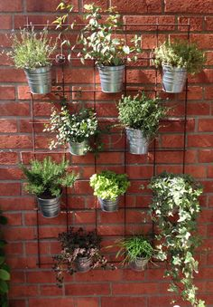 Beautiful Hanging Plants Ideas Hanging plants, creative ideas for hanging plants indoors and outdoors - indoor outdoor hanging planter ideasHanging plants, creative ideas for hanging plants indoors and outdoors - indoor outdoor hanging planter ideas