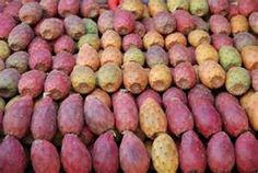 Eatting these fruits is a grand messy prickly affair...fichi dindia - prickly pears