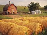 barns and hay bales