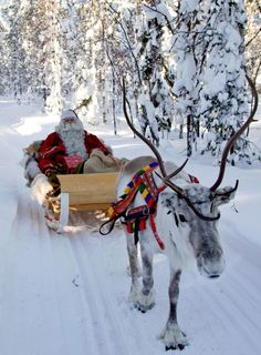 fi photos: Santa Claus Reindeer in Santa Claus Village Arctic Circle Rovaniemi in Lapland in Finland. Image of Father Christmas reindeer Diy Christmas Balls, Merry Christmas, Christmas Scenes, Father Christmas, Christmas Love, Christmas Pictures, Winter Christmas, Vintage Christmas, Christmas Tables