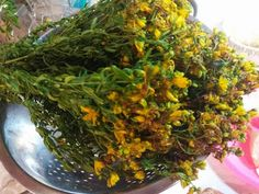 Health Tips, Health Care, Seaweed Salad, Cabbage, Health Fitness, Herbs, Vegetables, Ethnic Recipes, Plants