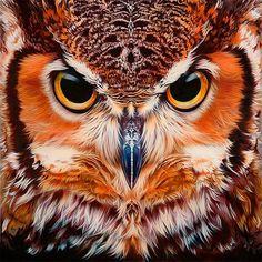 Coruja animais DIY pintura Diamante Ponto Cruz 5D Diamante Bordado animal coruja Diamante Mosaico Imagem Rhinestone decor Presente AA393