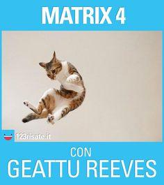 Matrix 4, a Natale al cinema
