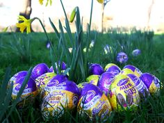 hd easter background wallpaper (click to view)