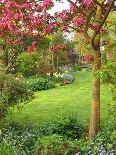 """My garden with Malus """"rudolph""""   Flickr - Photo Sharing!...It's not My garden, unfortunately:))"""