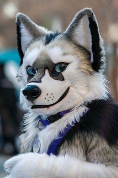 Cosplay, Wolf Fursuit, Animal Costumes, Furry Wolf, Furry Drawing, Anthro Furry, Otaku, Furry Art, Fantasy Art