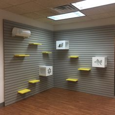 Cat enrichment wall perfect for humane societies and animal shelters. Powder coated metal shelves and boxes, available in a variety of colors.
