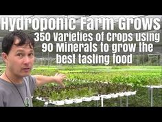 Hydroponic Farm Grows 350 Varieties of Vegetables with 90 minerals to Grow the best tasting food - YouTube
