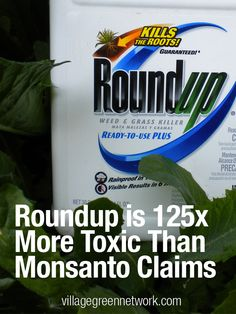 Roundup is 125 Times More Toxic Than Monsanto Claims / http://villagegreennetwork.com/roundup-125-times-toxic-monsanto-claims/