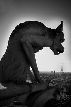 Parigi Black and White