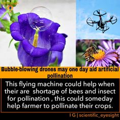 Japan scientisit shows that, this flying machine someday help farmer to pollinate their crops .#farmer #newresearch #science