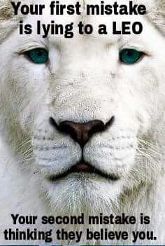 Leo Quotes your first mistake is lying to a leo your second mistake is Leo Quotes. Here is Leo Quotes for you. Leo Quotes leo lioness quotes sweet and best quotes for family and. leo q. Horoscope Lion, Daily Horoscope, All About Leo, Leo Quotes, Smile Quotes, Joker Quotes, Strong Quotes, Attitude Quotes, Leo Zodiac Facts