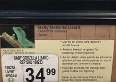 "Guy Visits Pet Store and Replaces Pet Names with His Own Hilarious Labels. ""Baby Godzilla lizard."""