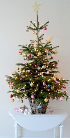Popular Christmas Tree Design And Decor Ideas For Small Apartment - Christmas is a unique time of year, and a prime piece of Christmas, other than family and other friends and family, is positively the Christmas tree. Christmas Tree Design, Christmas Tree In Basket, Tabletop Christmas Tree, Christmas Trends, Little Christmas Trees, Beautiful Christmas Trees, Pink Christmas, Winter Christmas, Christmas Tree Decorations