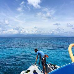 View of Cape Tribulation from McKay Reef....thanks for a great day Captain Kane & Cam! #greatbarrierreef #mckayreef #undinereef #capetribulation #daintree #paradise #australia #sea #snorkelling #greenturtle #barracuda #exploreTNQ #fish @oceansafaricapetrib by w800 http://ift.tt/1UokkV2