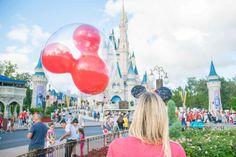 Best 25 Kissimmee Florida Ideas On Pinterest Florida