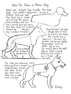 How to Draw A Police Dog Worksheet. Instructions at the Blog: http://drawinglessonsfortheyoungartist.blogspot.com/2013/02/how-to-draw-police-dog-worksheet.html#