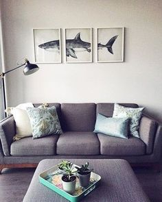 Home is where the shark is