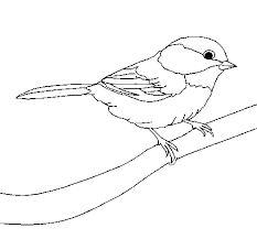 dessin oiseau sur une branche - Recherche Google