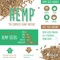Hemp seeds are a complete plant protein! Check out hemp seed nutrition facts and find out how and why you should be eating more of this superfood. Heart Healthy Recipes, Raw Food Recipes, Juice Recipes, Holistic Nutrition, Health And Wellness, Healthy Picnic Foods, Healthy Eating, Hemp Recipe, Plant Protein