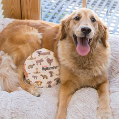 The Original MyWarmPet Heat Pad - Microwave Pet Heating Pad (Pet Warmer, Microwavable Safe Heated Pet Pads) *** Continue to the product at the image link. (This is an affiliate link) Pregnant Dog, Tiny Puppies, What Dogs, Cool Dog Beds, Pet Health, Pet Care, Pet Supplies