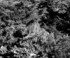 Whitney Hubbs Untitled (Hair)</em>, 2012