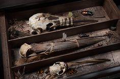 "Ron Pippin - ""Natural History Cabinet"""