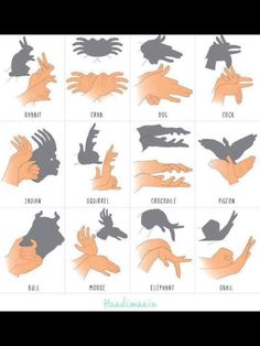 Schattenspiel Mehr puppets Shadow forms made by hand Shadow Puppets With Hands, Hand Shadows, Things To Do When Bored, 1000 Life Hacks, Shadow Art, Shadow Play, Babysitting, Kids And Parenting, Cool Kids