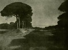 de-salva:      Rudolf Koppitz - Pinienlandschaft (Stone Pines Landscape). Original vintage photometalgraph, 1920s.  Rudolf Koppitz: http://en.wikipedia.org/wiki/Rudolf_Koppitz