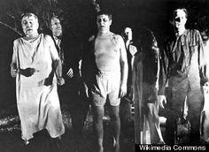 Zombie Apocalypse : Pictures, Videos, Breaking News