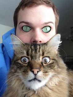 Funny pictures about Eye-Swaps Make Things Creepy. Oh, and cool pics about Eye-Swaps Make Things Creepy. Also, Eye-Swaps Make Things Creepy photos. Animal Face Swap, Animal Faces, Memes Humor, Cat Memes, Funny Humor, Jokes, Face Swap Fails, Funny Face Swap, Funny Animals