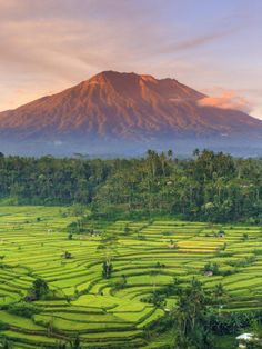 A beautiful view of Gunung Agung, Bali