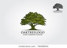 Find oak tree stock images in HD and millions of other royalty-free stock photos, illustrations and vectors in the Shutterstock collection. Tree Painting Easy, African Tree, Tree Stencil, Outdoor Trees, Tree House Designs, Tree Images, Tree Logos, Family Tree Wall Decal, Branding