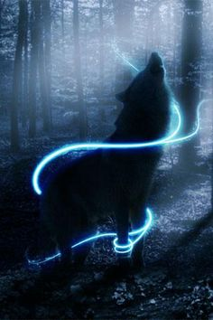 Download 3D Wolf for android, 3D Wolf 1.1 download
