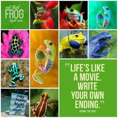 Life is like a movie. Write your own ending