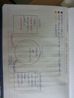 Bullet Journal, Education, Ancient History, 3, Drink, Geography, Teachers, Tecnologia, Beverage