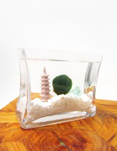 Marimo aquarium with an Asian theme.