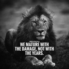 If you want to be a lion you must train with lions popular 2463 me gusta 11 comentarios motivating force motivatingrce en instagram all the hardships carry a meaning whether its a breakup fandeluxe Choice Image