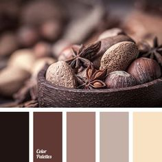 beige, brown with a shade of gray, cold shades of brown color, color matching, dark brown, dark gray-brown color, gray-brown, light brown, monochrome brown palette, monochrome color palette, shades of brown.6