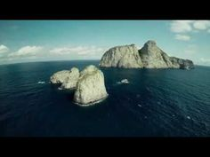Big Pacific  2017   SE1  EP1 Mysterious Save Wildlife, Our Planet, Mysterious, Habitats, Survival, World, Big, Water, Outdoor