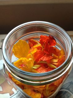 Kirby Jane's nasturtium recipes