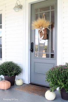 Front Door Refresh Paint colors Grey and The doors