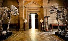 12 Secret, Surreal places you must visit in Scotland