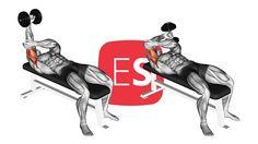 Ξαπλωτές εκτάσεις τρικεφάλων με το ένα χέρι Weight Loss, Losing Weight, Loosing Weight, Loose Weight