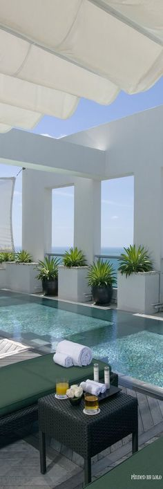 realpalmtrees.com... Concrete Scape MOdernPool #Miamipools #BuyPalms #UsingPLantsfordecorating - Luxury Homes
