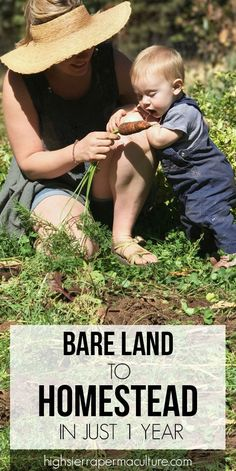 Develop a permaculture homestead in 1 year. Our story turning raw land into a homestead. #permaculture #homestead #homesteading #organicgarden